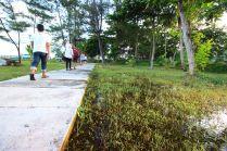 Kawasan resort Parai Tenggiri